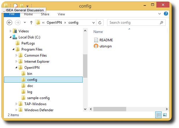 OpenVPN configuration file
